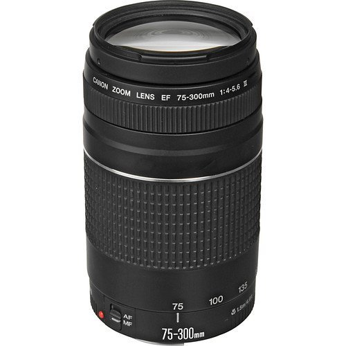 canon ef 75-300, best gifts christmas, best photography gifts christmas, best photography xmas gifts