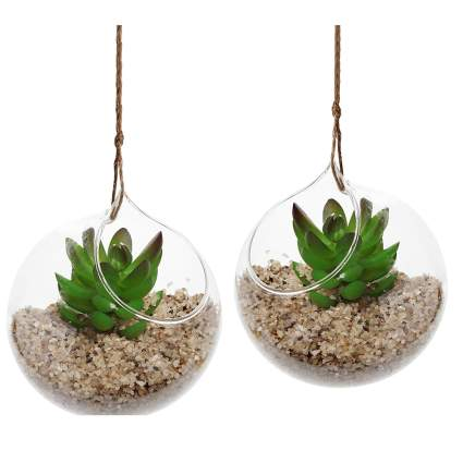 glass globe hanging planters