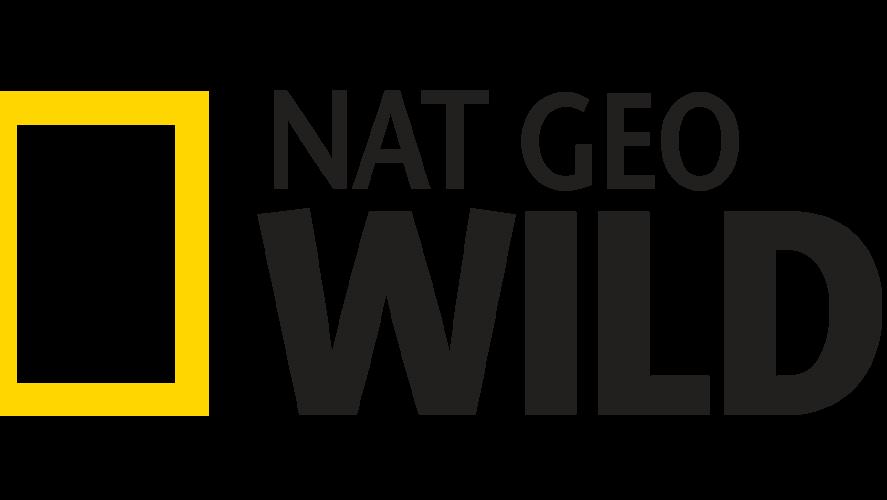 watch nat geo wild live stream online free