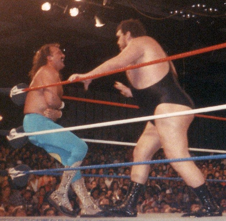 Andre the Giant, Jake Roberts, wrestling, rivalry