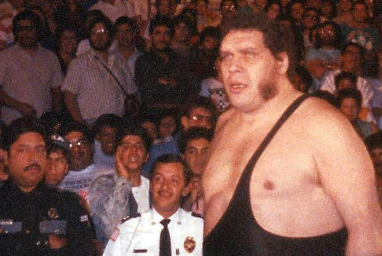 Andre the Giant, wrestling, ring