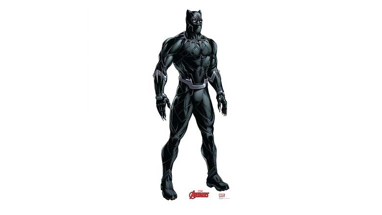 black panther decor