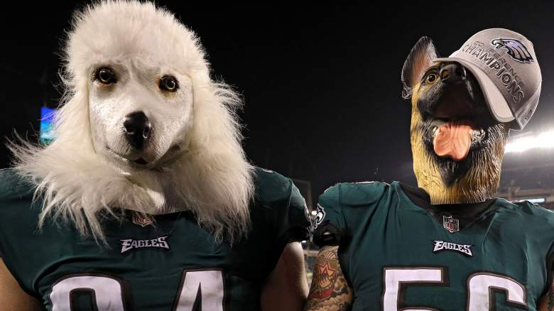 why eagles dog masks, underdogs, meaning