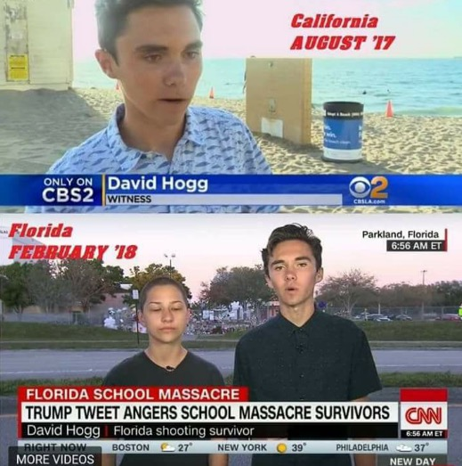 Hogg California Florida