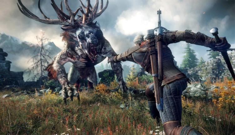a promotional image for the witcher 3 the wild hunt