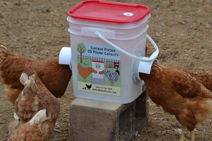 10 Best Chicken Feeders Which Is Right For Your Flock 2019 Heavy Com