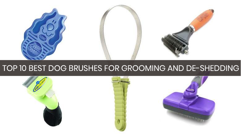 dog shedding brush