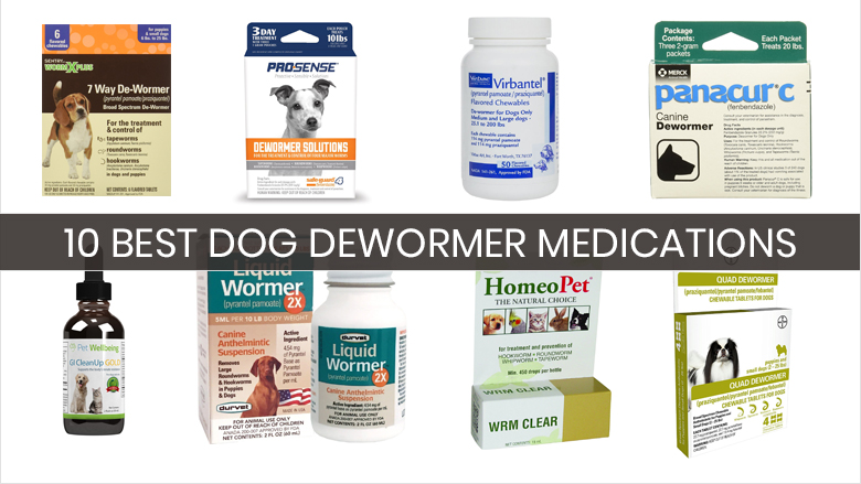 best dog dewormer