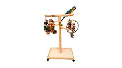Parrot wizard gifts for bird lovers