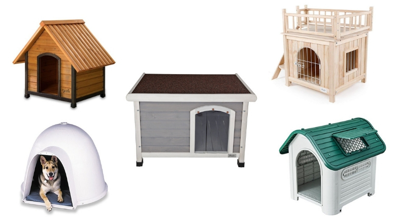 Buy Doghouse