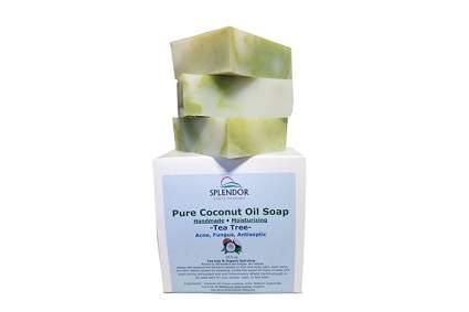 Coconut oil and tea tree soap