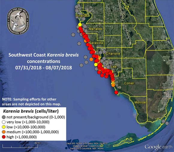 Red Tide Map Near me
