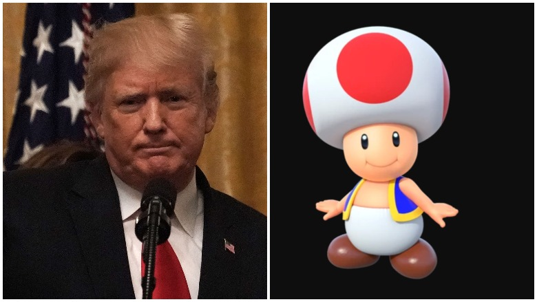 Mario Kart Toad Trending on Twitter, Stormy Daniels' Tell-All Book about trump says sex was like toad and mario kart