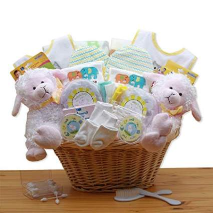 Double Delight Twins New Baby Gift Basket
