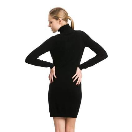 Citizen Cashmere Turtleneck Dress