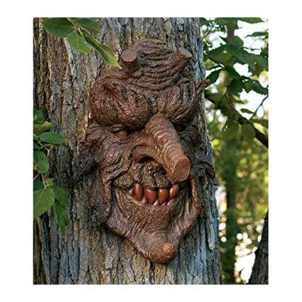 Scary face on tree