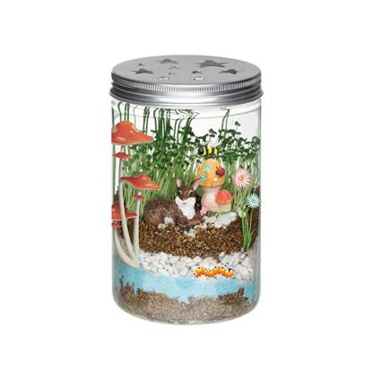 kids terrarium kit
