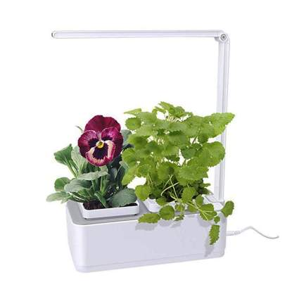 small indoor hydroponic growing system