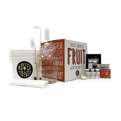 fresh fruit wine making kit
