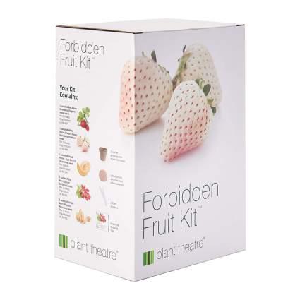 Forbidden Fruit growing kit