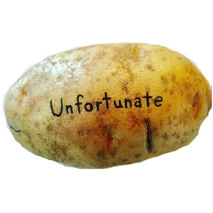 "Potato with ""unfortunate"" written across it"