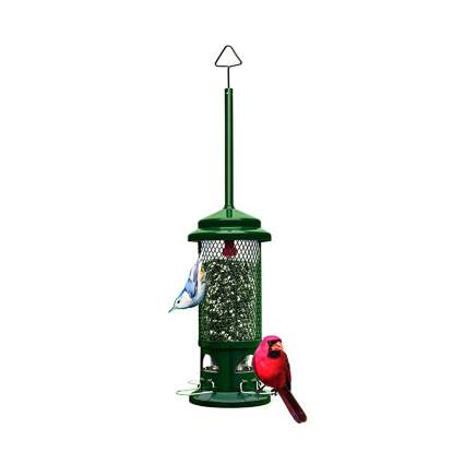 squirrel proof outdoor bird feeder