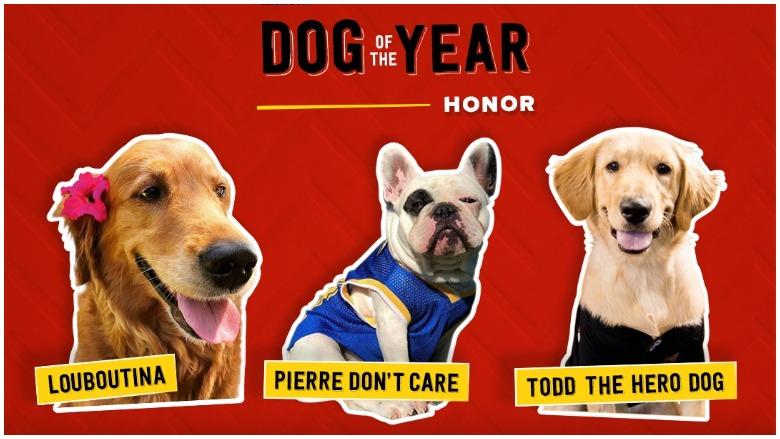 Milk-Bone Dog of the Year Honor