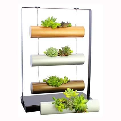 vertical indoor hanging garden