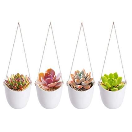 white ceramic hanging succulent planters