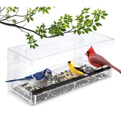 Window birdfeeder with birds