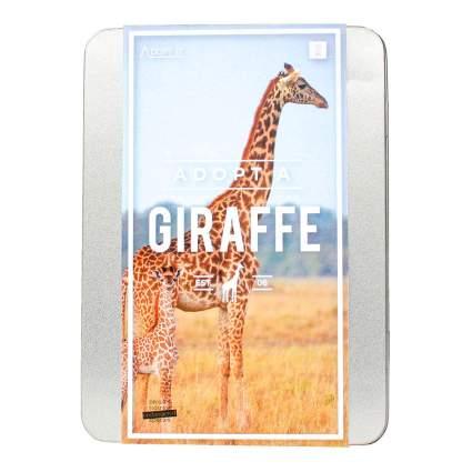 adopt a giraffe pamphlet
