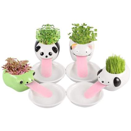 Cute animal-shaped planters