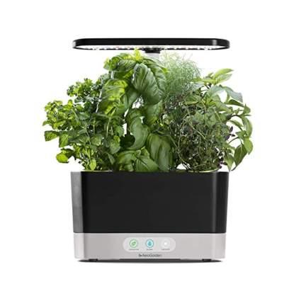 hydroponic countertop garden