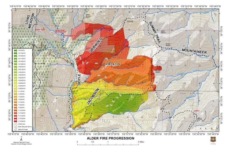 Alder Progression Map