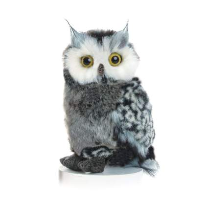 Aurora gifts for bird lovers