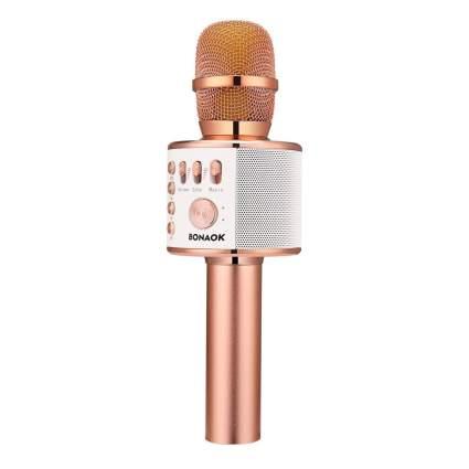 banaok bluetooth karaoke mic