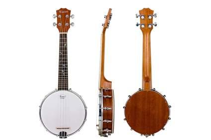 Kmise 4-string banjo