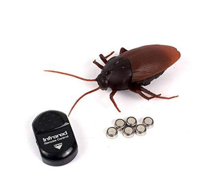 youthful fake cockroach