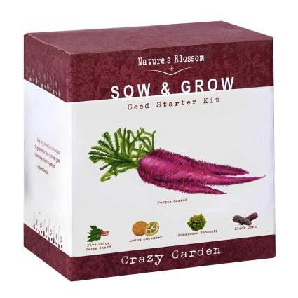Vegetable growing seed kit