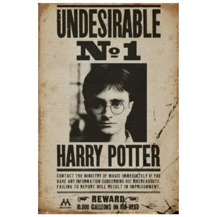 Undesirable No. 1 Harry Potter Poster