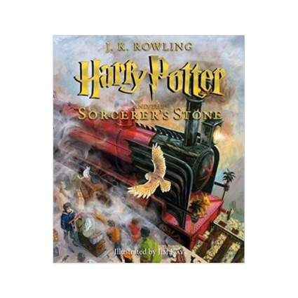 harry potter sorcerers stone illustrated