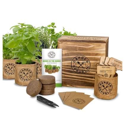 indoor herb kit growing hanukkah gifts