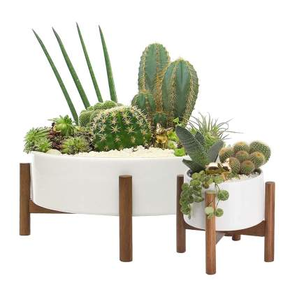 mid century modern succulent planter set