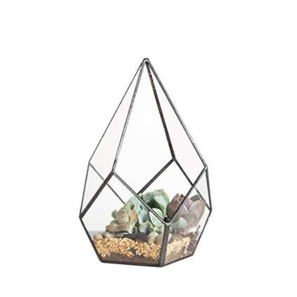 NCYP terrarium best office gifts