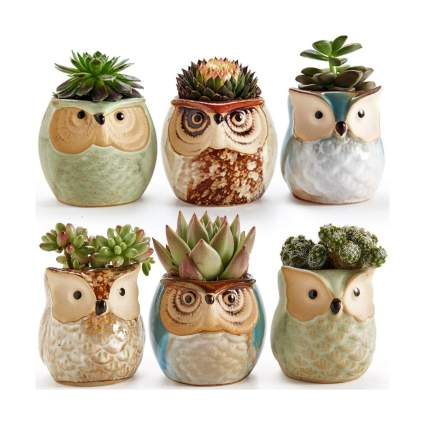 Sun-E gifts for bird lovers