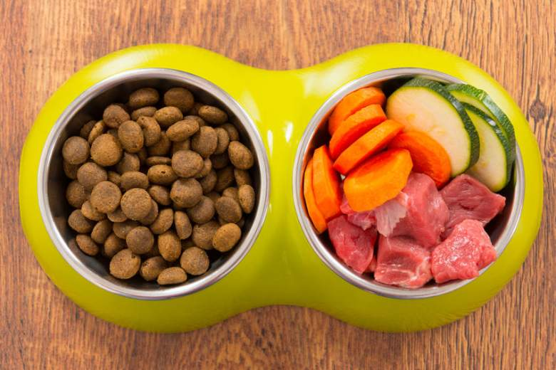 5 Best Homemade Dog Food Recipes Your Dog Will Love Heavy Com