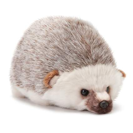 hedgehog plush toy