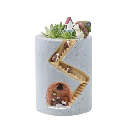 Small succulent planter showing hedgehog den