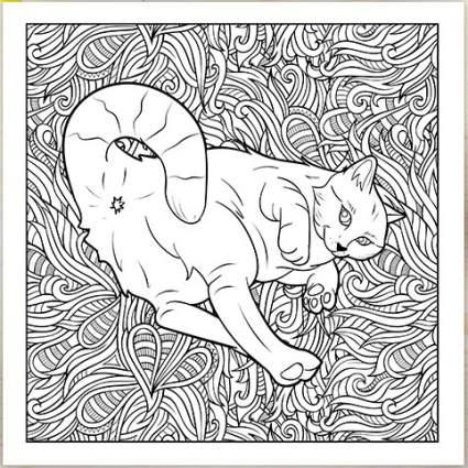 Cat coloring book image