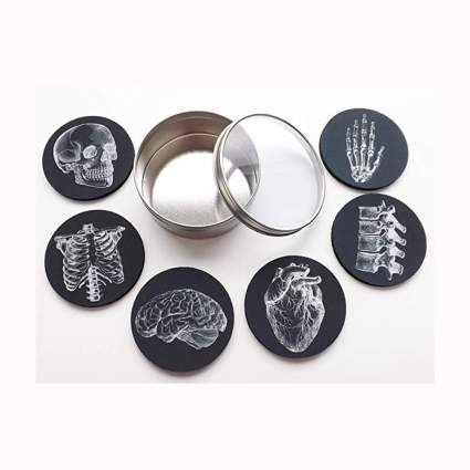 anatomy drink coasters